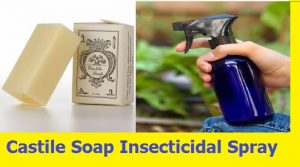 Castile Soap Insecticidal Spray