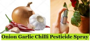 Onion Garlic Chilli Pesticide Spray
